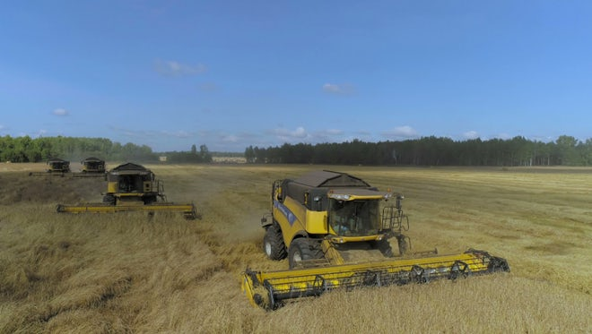 Harvesting Vehicles Gather Crops : Stock Video