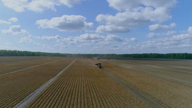 Plowed Field Aerial Shot : Stock Video