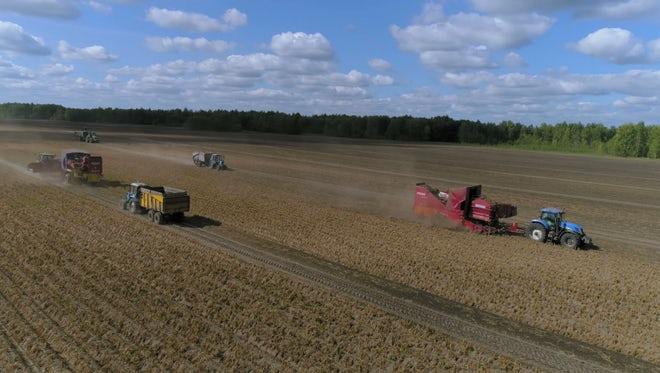 Tractors Pass Through Field: Stock Video