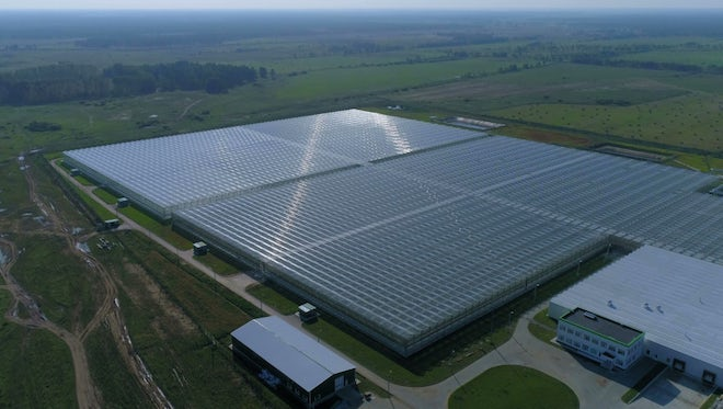 Large Greenhouses Outside The City : Stock Video