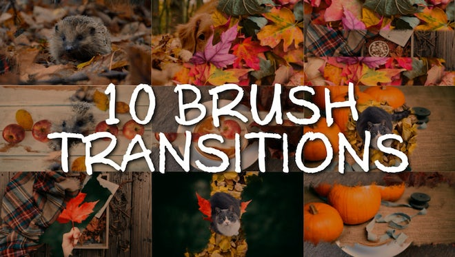 10 Brush Transitions: Stock Motion Graphics