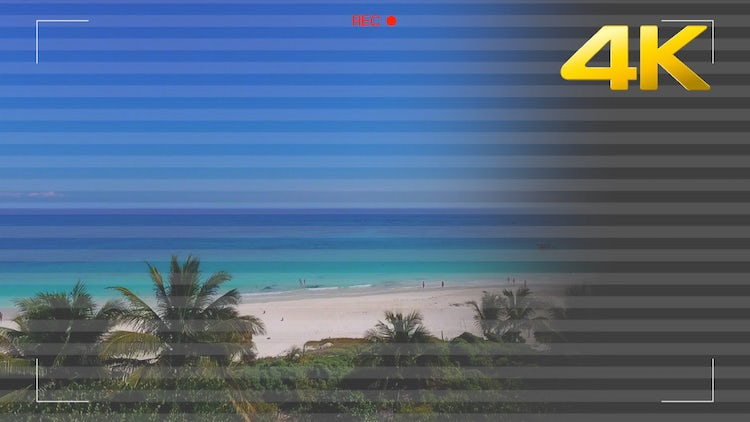 Camera Recording Screen with Scanlines: Stock Motion Graphics
