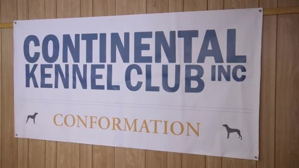 Continental Kennel Club
