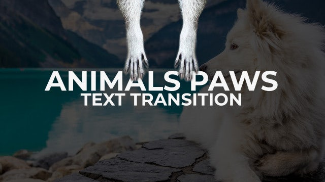 Animals Paws - Text Transitions: Premiere Pro Templates