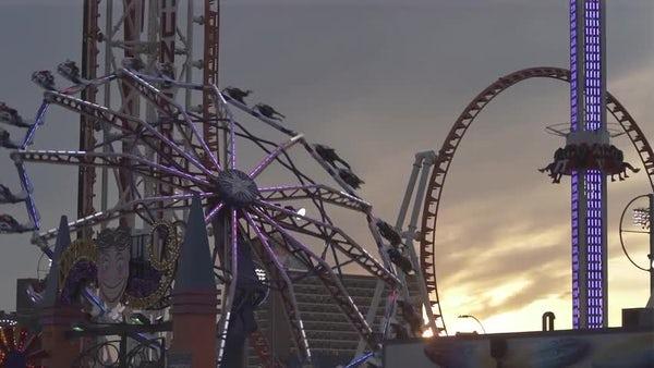 Coney Island Daydream