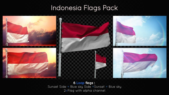 Indonesia Flags Pack: Stock Motion Graphics