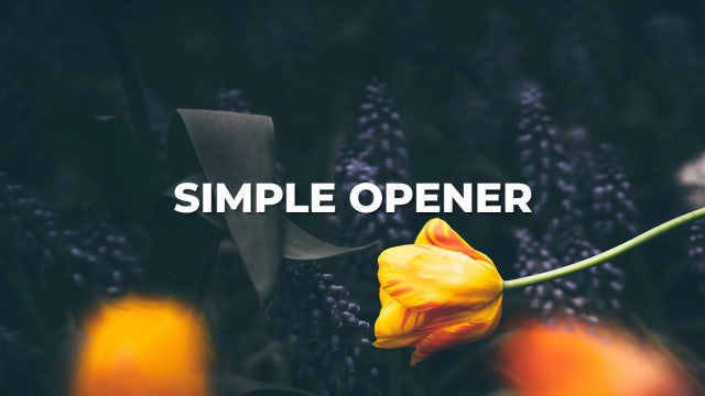 Simple Opener: Premiere Pro Templates