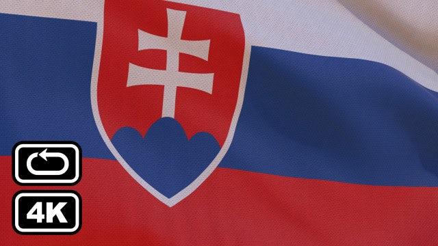 Slovakia Flag: Stock Motion Graphics