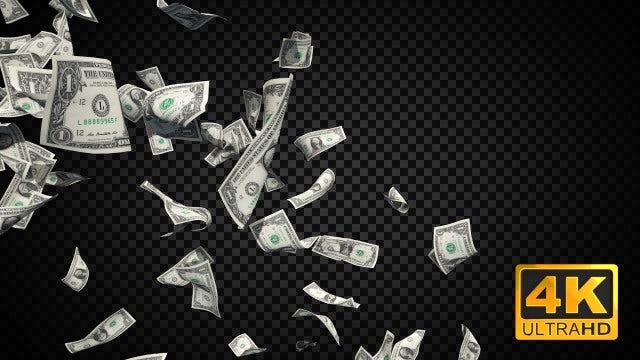 Cash Money Dollar Bills: Stock Motion Graphics