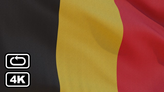 Flag Of Belgium: Stock Motion Graphics