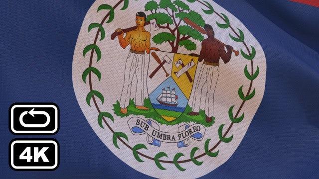 Belize Flag: Stock Motion Graphics