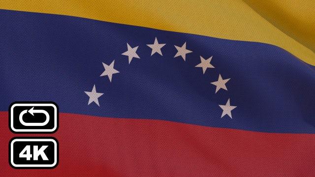 Venezuela Flag: Stock Motion Graphics