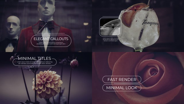 Elegant Callout Titles 4k: After Effects Templates
