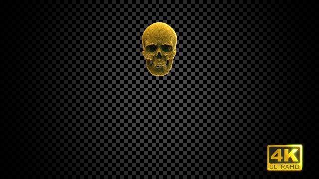 Golden Skull: Stock Motion Graphics