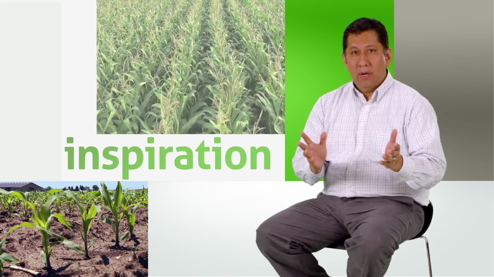 90th Anniversary | DuPont Pioneer