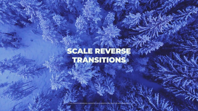 Scale Reverse Transitions: Premiere Pro Templates