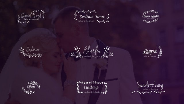 Wedding Lower Thirds And Titles: After Effects Templates