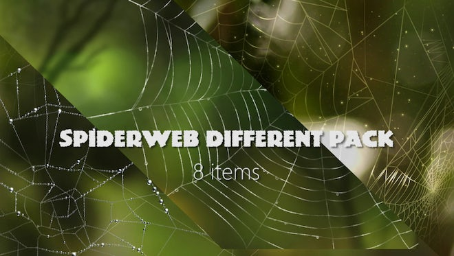 Spider Web Background Pack: Stock Motion Graphics