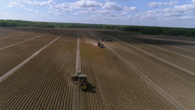 Tractors Driving On Plowed Field: Stock Video
