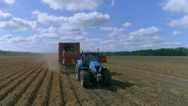 Tractor Pulling Combine Harvester : Stock Video