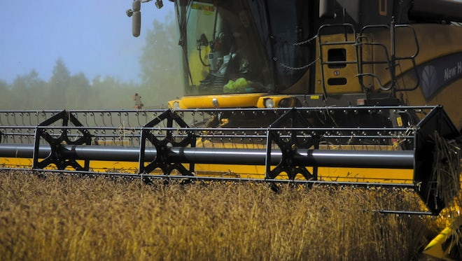 Harvester Collecting Grain: Stock Video