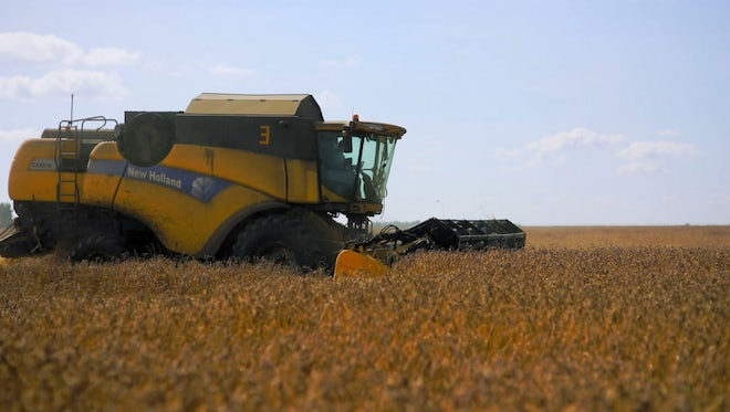 Harvester Harvesting Summer Grains: Stock Video