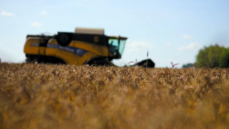 Rack Focus Of Harvester: Stock Video