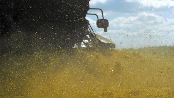 Harvester Sprays Chaff: Stock Video