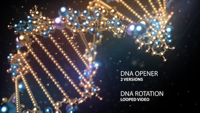 DNA Opener: After Effects Templates