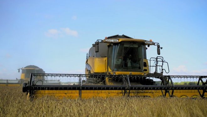 Combine Harvester In Wheat Field: Stock Video