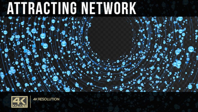 Attracting Network: Stock Motion Graphics